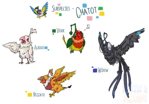 Chatot Subspecies by LucarioBananaSplit