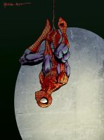Spider-man Hanging by ParisAlleyne