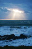 Rays by Avaly