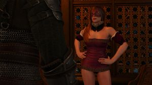 Sexy Girl The Witcher 3 by MillianaMoonwalll