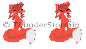 2 Foxes by ThunderStormin
