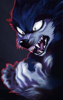 WereSonic ArtTrade by Annasko