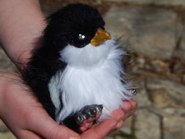 Posable Penguin Chick by DLChart