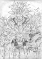Dragonball by SempaxWarrior