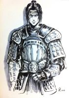 Zhao Yun by alempe