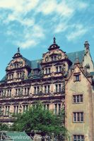 Heidelberg by HanaAndreaP