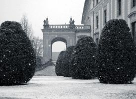 Winter Palace by barefootliam
