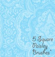 Paisley Square Brushes by DariaFalcon