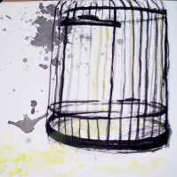 The Cages by Siscosis