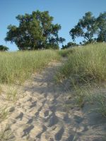 Small Dune by yellowcobalt