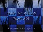 Hair Brushes by d0gma
