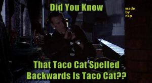 Today's Obscure Fact!! by nkp1981