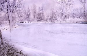 Winter Landscape background by Leina1
