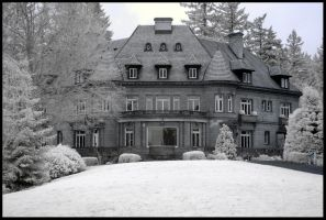 Pittock Mansion by metro