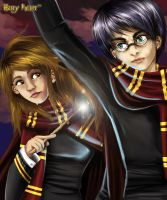 Harry and Hermione by Sakuems