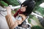 Mikasa Ackerman: of no consequence by blooddrencher
