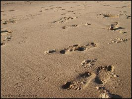 Footprints by selfexplanatory
