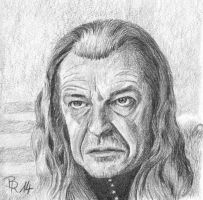 Denethor by LoonaLucy