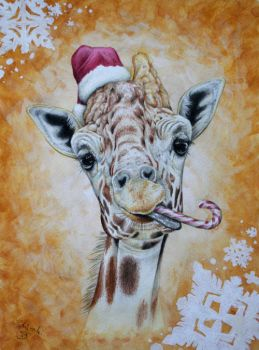 Christmas giraffe by Schiraki