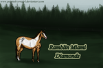 Rambler - Tracker by painted-cowgirl
