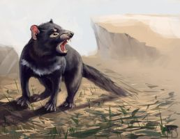 Tasmanian Devil by LynxMB