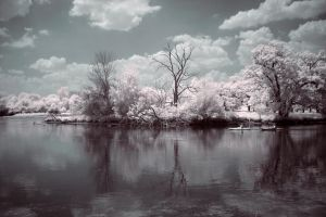Infrared Photography River by Wallcrawler62