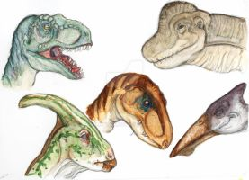 Dinosaurs head studies by vilijntje