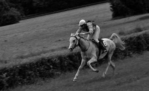Horse racing - VIII by etr-wroclove