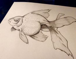 Ugly Fish - Pencil Realism by ArtsyMuffin
