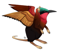 Sengi/Bee-eater Griffin by twapa