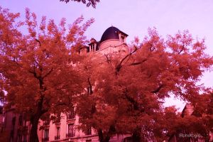 Full-Spectrum Paris by IRphotogirl