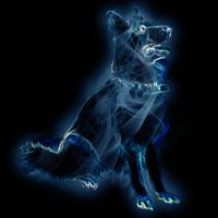 Harry Potter patronus by stasiabv