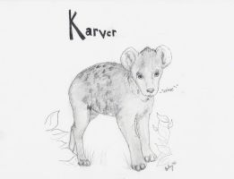 Karver by ParaIsBack