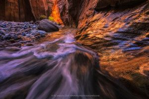 Where the Glow Goes by PeterJCoskun