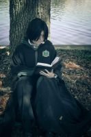 The Half Blood Prince And His Book by JavaCosplay