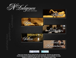 NDulgence Salon Website 2011 Design by gamesandgigs