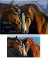 Horses by jolabrodnica
