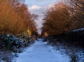 Peaceful In Winter by DundeePhotographics