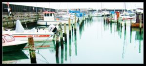boats by efish