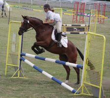 STOCK Showjumping 491 by aussiegal7