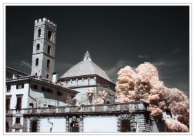 lucca by Reduasch