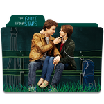 The Fault In Our Stars 2014 Folder Icon by sonerbyzt