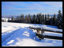 Winter Landscapes-POLAND by mutrus
