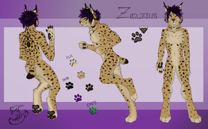 Reference Sheet Commission: Zelzius by Roukara