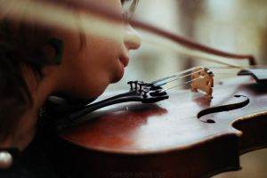 violin by MotyPest