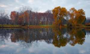 Red Autumn by Viand
