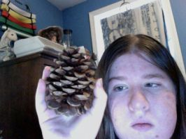 Pinecone from Minnesota by AYF100