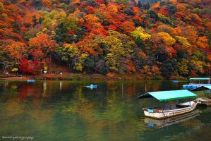autumn reflection by evenliu