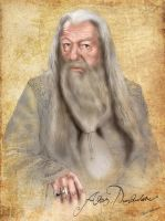 Harry Potter professor Dumbledore portrait by webmartin99