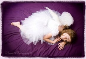 Sleeping Angels by tracieteephotography